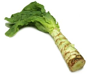 Celtuce. Photo courtesy of FoodSubs.com