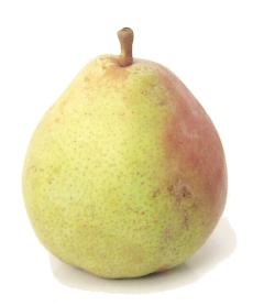Comice Pear, Wonderful Pear, Evo Karma, Sweetest Tastiest, Pear Comice ...
