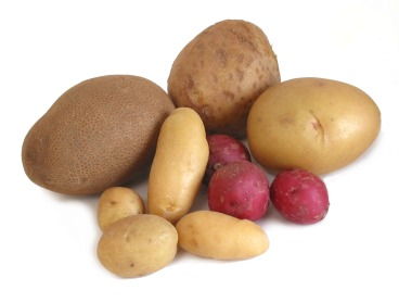 Cook's Thesaurus: Potatoes