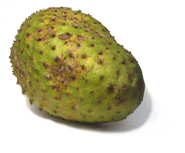 soursop = guanabana Pronunciation: sow-ER-sop Notes: This large, dark ...