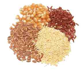 cook s thesaurus grains category